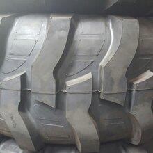 21L-24装载机轮胎R4花纹轮胎工程胎正品