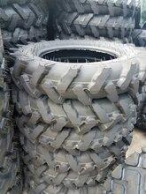 厂家批发7.50-16抓地虎轮胎拖拉机轮胎三包图片