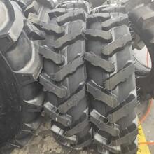 批發抓地虎花紋輪胎9.5-24拖拉機輪胎農用胎圖片