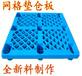塑料垫仓板防水防潮仓库塑料托盘叉车卡板北京仓储设备厂