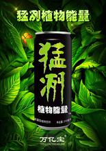 猛冽植物能量饮料万亿宝植物饮料