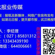 027一8583一1312楚天都市报广告发布电话