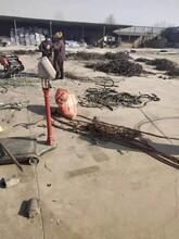 青山湖電纜回收價格24小時上門回收報價圖片