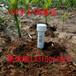 QY-TDR土壤水分测量仪清易电子研发生产