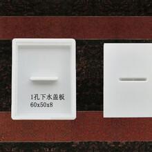 供应浙江嘉兴盖板塑料模具铁路隧道盖板模具规格齐全图片