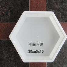 陕西护坡模具-六角护坡塑料模具-陕西护坡塑料模具厂家图片