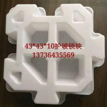 護坡塑料模具,六角護坡塑料模具廠家,浙江華東塑模廠批發價銷售圖片