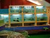 增城定做玻璃海鲜鱼池定做海鲜鱼池哪里强设计超市海鲜鱼池公司