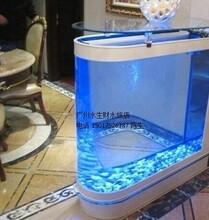 首选广州清洗办公室鱼缸越秀区渔民新村鱼缸清洗清洗鱼缸清理