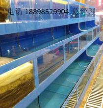 三元里餐饮海鲜池定做优惠海鲜池定做公司电话冷冻海鲜池制冷