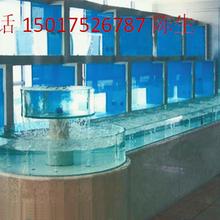 广州圆弧海鲜池定做白云区异形海鲜池定做公司小龙虾海鲜池制冷