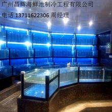 从化定做异形海鲜鱼池江浦设计海鲜鱼池制冷海鲜鱼池定做