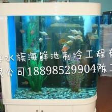 广州白云区清洗鱼缸广州龙洞清洗鱼缸广州好水族鱼缸公司