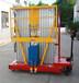 供应双柱铝合金升降机防爆铝合金升降机SJDL0.2-10