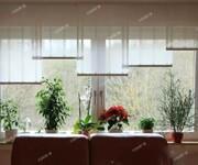 海南日佳柏莱铝包木门窗厂家价格招商加盟区域代理价格实惠图片