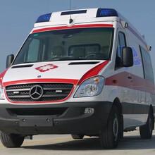 江门台山120救护车出租收费标准图片