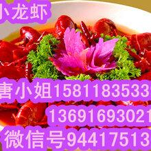正宗潜江麻辣小龙虾培训,潜江正宗美味麻辣小龙虾,诚信餐饮小龙虾加盟