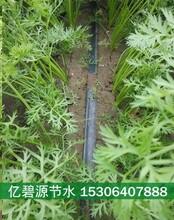 济宁蔬菜滴灌系统设计方案