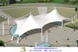 三亚市游泳池景观张拉膜,绿色沙滩休闲膜伞设计制作
