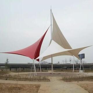 随州市水厂景观遮阳棚膜结构,加油站防火屋顶膜结构设计施工图片6