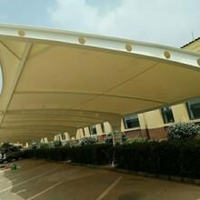 邳州市汽車車棚膜結構,學校體育看臺張拉膜安裝圖片