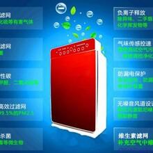 空气净化器品牌精选上海空气净化器双11大特惠