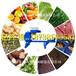 供应天众节能环保单螺旋压榨机蔬菜垃圾破碎压榨脱水机
