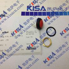 原厂供应商48M110NITW按钮开关图片