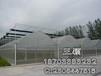 安平舶航厂家直销聚乙烯防虫网,不锈钢防虫网,可定制加工。