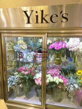 左右平移門鮮花柜,鮮花水果店保鮮展示柜,濮陽鮮花柜