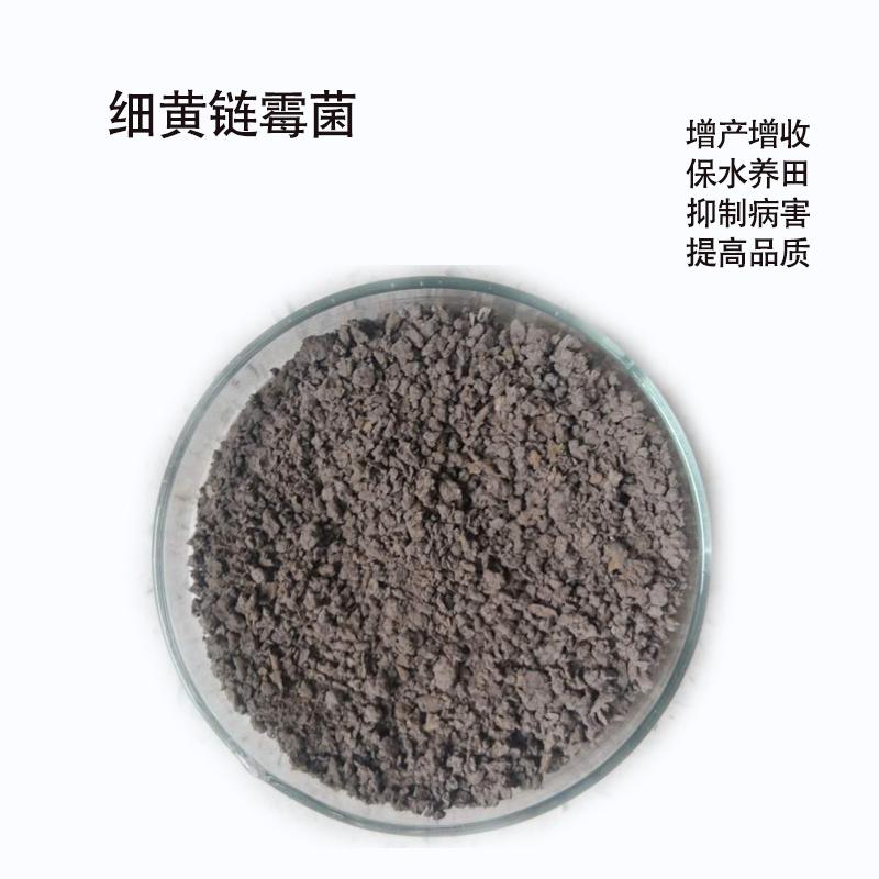 手动肥料强度测定仪图片