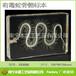 蛇骨骼标本动物骨骼标本专业生产厂家南宁本源树脂包埋标本教学标本
