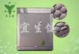 天然玉石保健床垫的中医理疗支持远红外温灸磁疗垫