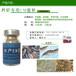 培藻用的水产养虾em菌em微生物制剂哪里有卖