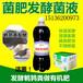 鹌鹑粪发酵生物菌肥的技术方法