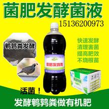 鹌鹑粪发酵生物菌肥的技术方法图片