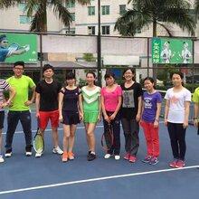 深圳网球培训罗湖网球教练网球场