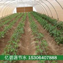 长治大棚蔬菜滴灌工程设计方案