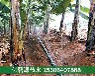 广元果园高效节水微喷灌溉工程价格
