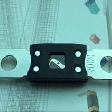 大量供应ANL-B汽车保险丝片螺栓式保险丝片图片