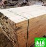 灵川建筑木方价格
