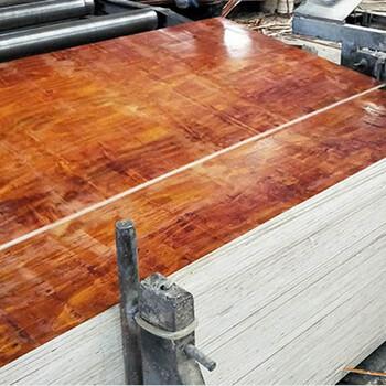 贵港建筑模板厂-九层木模板-厚板芯片-胶合力强