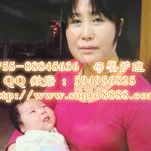 供应大陆赴香港资深专业育婴师育儿嫂陪伴式早教