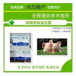 生猪养殖饲喂益生菌饲料添加剂肠道好少生病