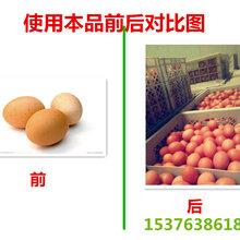 鸡改善蛋壳颜色饲料添加剂