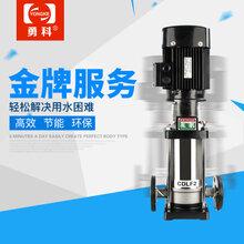 卫生级管道增压泵锅炉热水循环水泵图片