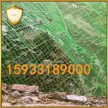 GNS2裹塑主动网厂家直供主动防护网销售