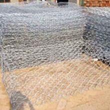 供应镀锌石笼网,包塑石笼网,优质格宾网。
