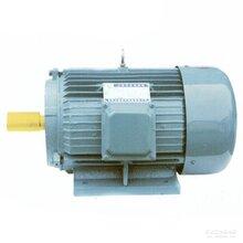 YD系列变极多速电机型号齐全三相异步电动机现货批发