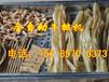 滁州小型牛排豆皮机厂家、牛排豆皮机多少钱一台、牛排豆皮生产线